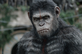 Best Films of 2014