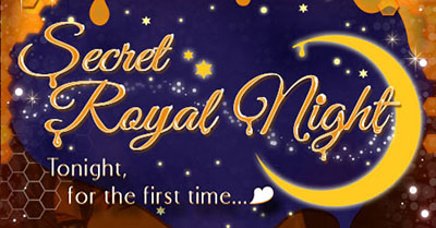 bmpp-secret-royal-night