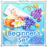 mfwp-our-fun-fall-date-house-reform-beginner-set